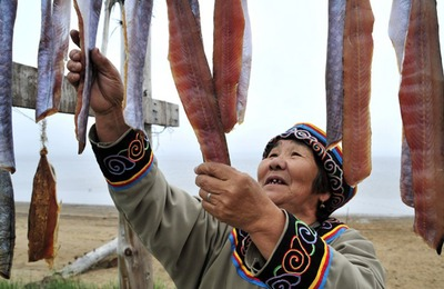 Жители национальных поселков Ямала стали есть меньше рыбы