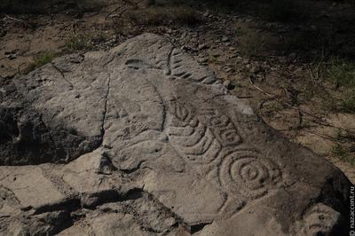 Новые петроглифы найдены у села Сикачи-Алян