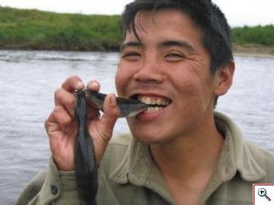 Камчатские рыбаки заманят рыбу в реки