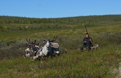 Молодые оленеводы Якутии получат по миллиону на жилье