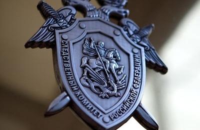 """СК возбудил уголовные дела за фотографии нацистов в """"Бессмертном полку"""""""