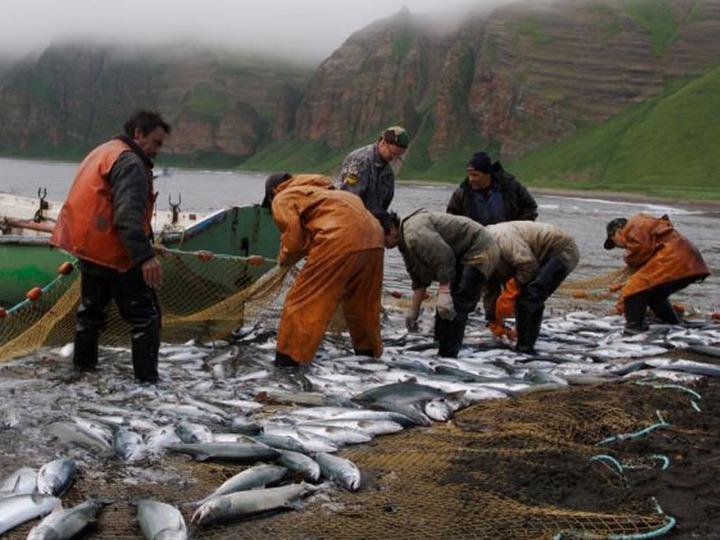 У аборигенов Камчатки продолжаются проблемы с выловом рыбы