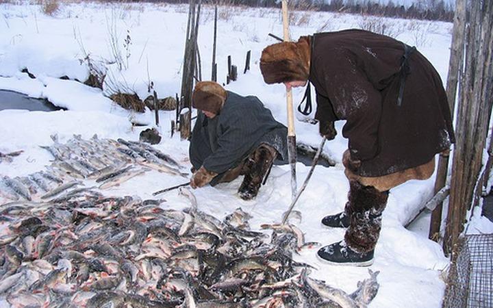 В Ловозере прошел семинар по освоению квот на рыбу для саамов