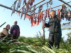 Охинский чиновник подозревается в получении взятки рыбой от нивхов