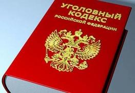 Активисты Новосибирска требуют для избившего Кристину Кумеду экс-студента из Дагестана 282 статью