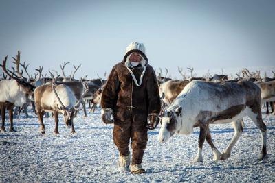 """На Ямале предложили создать """"подушку безопасности"""" для коренных народов"""