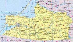 Калининградская нация