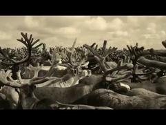 Фильм о подвиге представителей коренных малочисленных народов в Великой Отечественной войне